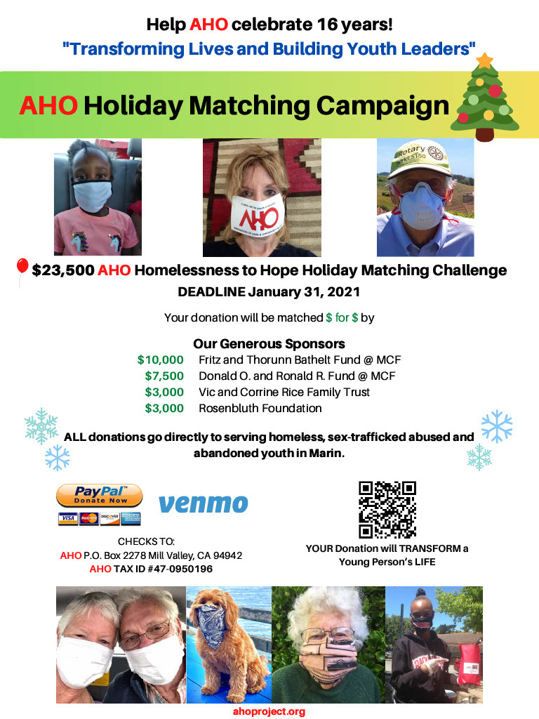 AHO Holiday Matching Campaign 2020