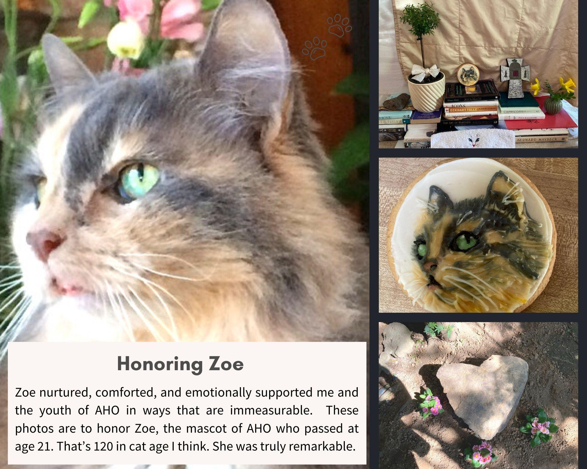honoring zoe